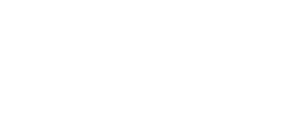 logo-bmi-blanco